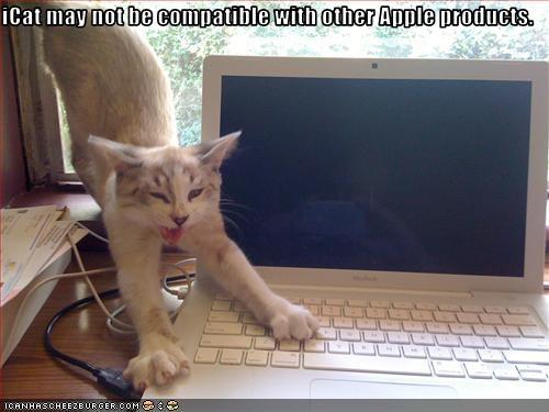 apple computer laptop - 2525150464