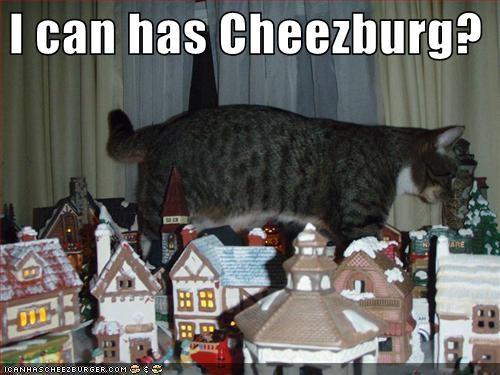 Cheezburger Image 2525828864