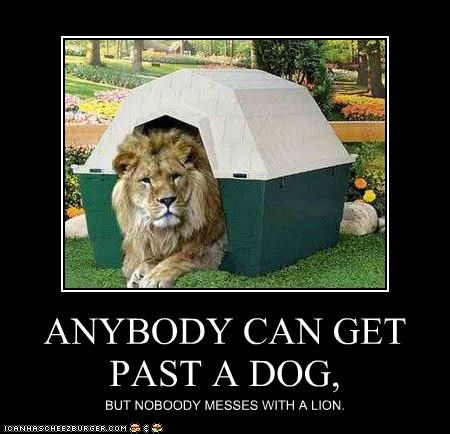 ANYBODY CAN GET PAST A DOG, BUT NOBOODY MESSES WITH A LION.