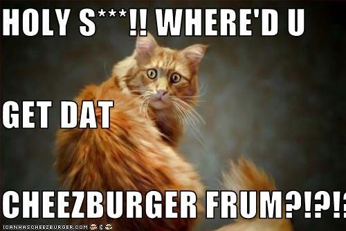 Cheezburger Image 2528081664