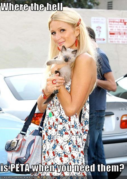 dogs,famous for no reason,paris hilton,peta