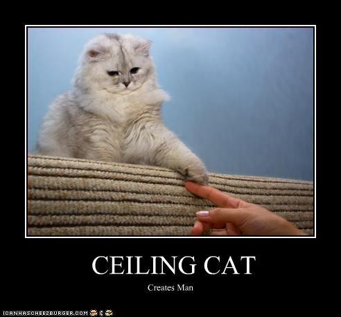 CEILING CAT Creates Man