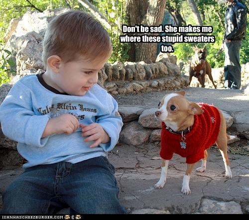baby chihuahua clothing human sweater - 2529380608