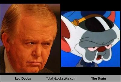 animation,cartoons,cnn,Lou Dobbs,news,pinky and the brain,pundit