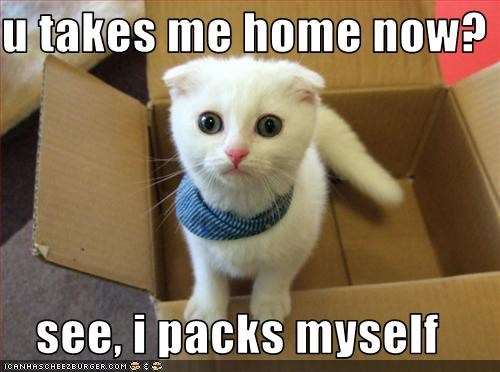 adopted box home packing - 2529943296
