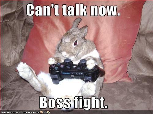 busy lolbuns playing video game - 2531742208