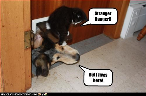 But I lives here! Stranger Danger!!