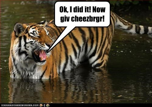 Cheezburger Image 2532769536