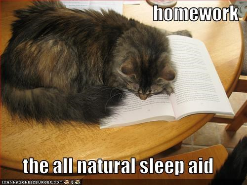 book homework nap sleeping - 2534594816