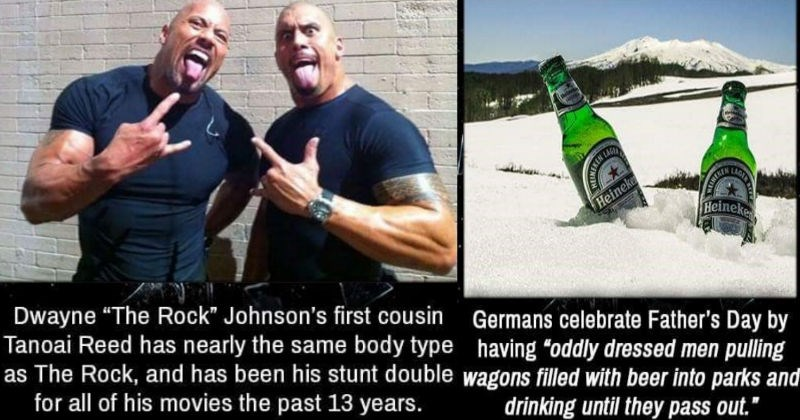 Collection of very entertaining facts.