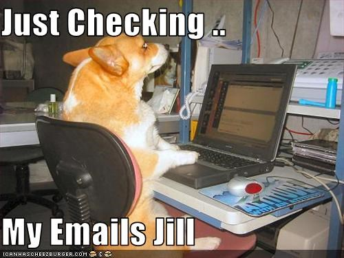 Just Checking My Emails Jill Cheezburger Funny Memes Funny Pictures