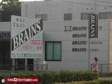 brains company shop store store front - 2536692736