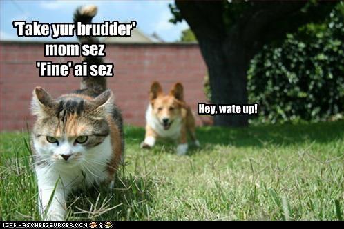 'Take yur brudder' mom sez 'Fine' ai sez