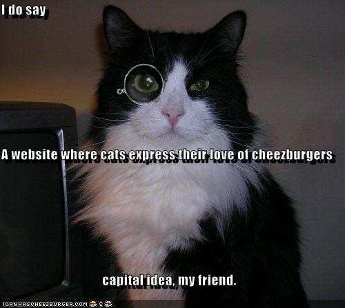 Cheezburger Image 2540355584