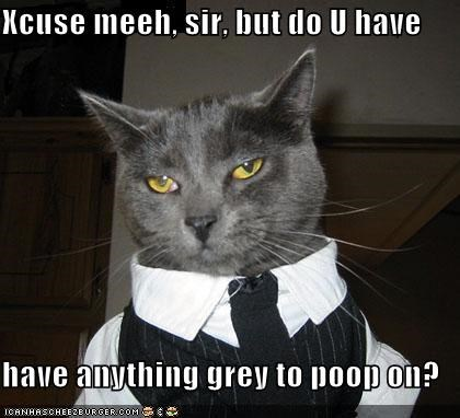 Xcuse meeh, sir, but do U have have anything grey to poop on