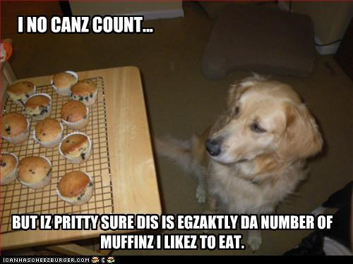 I NO CANZ COUNT... BUT IZ PRITTY SURE DIS IS EGZAKTLY DA NUMBER OF MUFFINZ I LIKEZ TO EAT.
