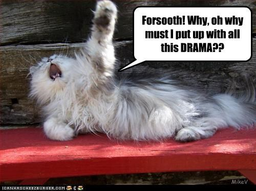 Ironic cat is ironic Forsooth! Why, oh why must I put up with all this DRAMA?? MikeV