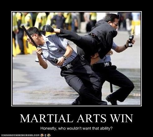 martial arts police win - 2543284480