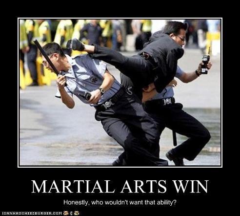 martial arts police win - 2543284480