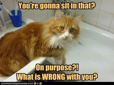 bath confused do not want - 2544073984