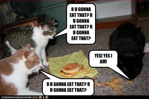 YES! YES I AM! R U GONNA EAT THAT? R U GONNA EAT THAT? R U GONNA EAT THAT? R U GONNA EAT THAT? R U GONNA EAT THAT?
