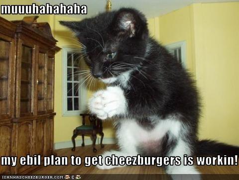 Cheezburger Image 2547988224