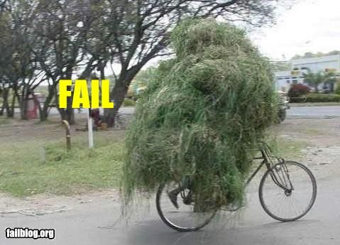 bicycle g rated hay overloaded transportation - 2550279680