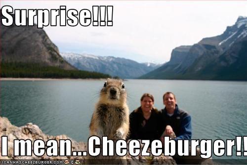 Cheezburger Image 2553133056