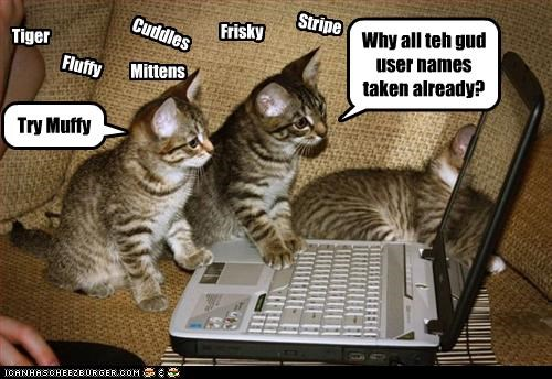 Stripe Tiger Fluffy Cuddles Mittens Frisky Try Muffy Why all teh gud user names taken already?