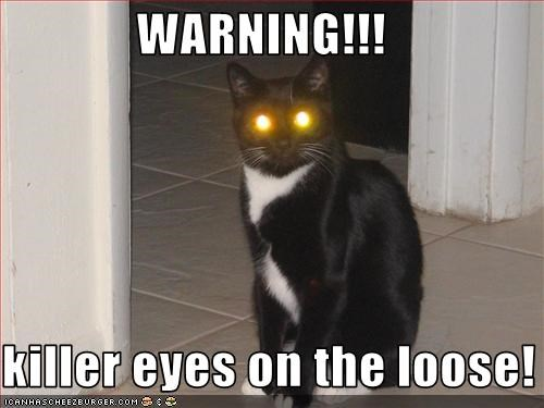 WARNING!!!  killer eyes on the loose!