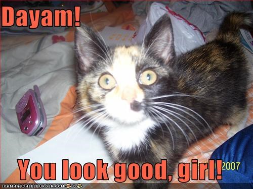 Dayam You Look Good Girl Cheezburger Funny Memes Funny Pictures