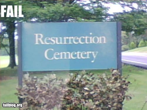 cemetery,g rated,name,undead,zombie