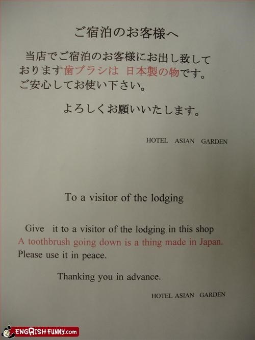 hotel,Japan,notice,peace,please,shop,thank you,toothbrush,visitor
