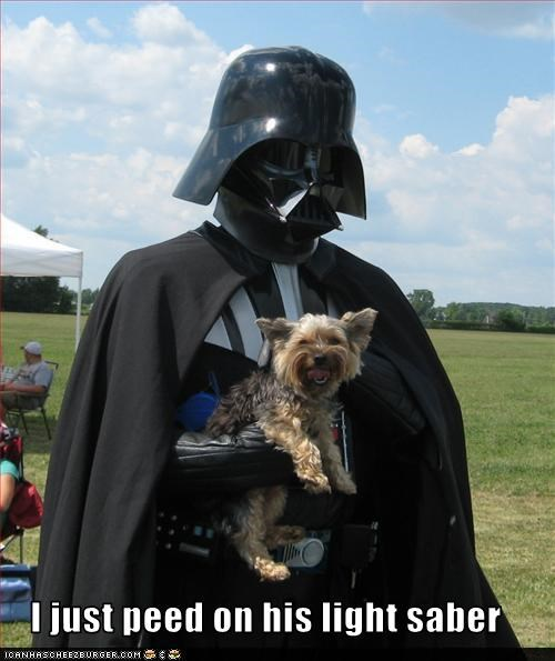 costume,darth vader,pee,yorkshire