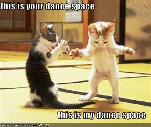 Image result for this is your dance space