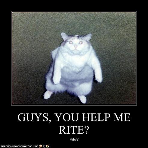 GUYS, YOU HELP ME RITE? Rite?