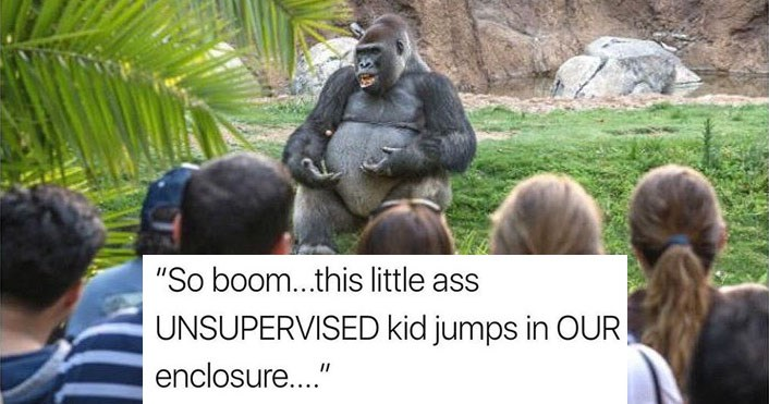 Collection of funny memes about Harambe, dating, dogs, cats, Barack Obama, DOnald Trump, partying, girls, sports, gaming and pizza.