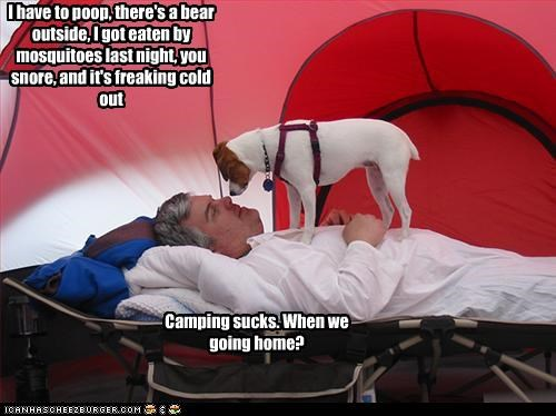 I have to poop, there's a bear outside, I got eaten by mosquitoes last night, you snore, and it's freaking cold out Camping sucks. When we going home?