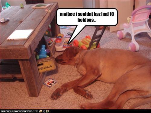 maibee i souldnt haz had 10 hotdogs...
