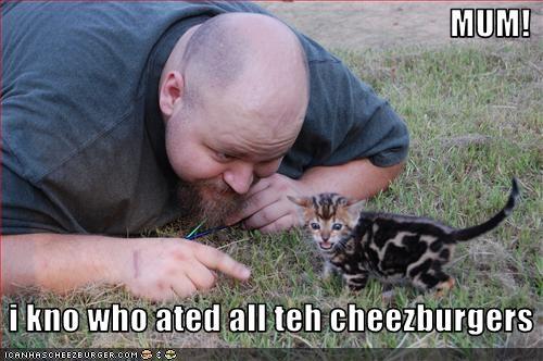 Cheezburger Image 2570014720