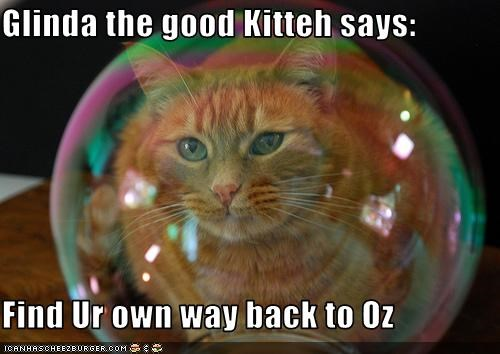 bubbles mean movies oz