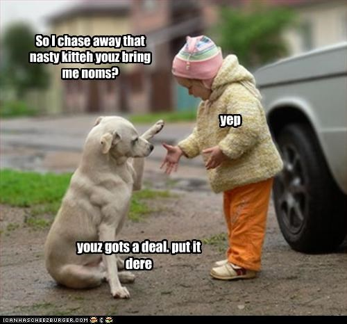 chase deal human kid kitteh labrador nom shake - 2570221312