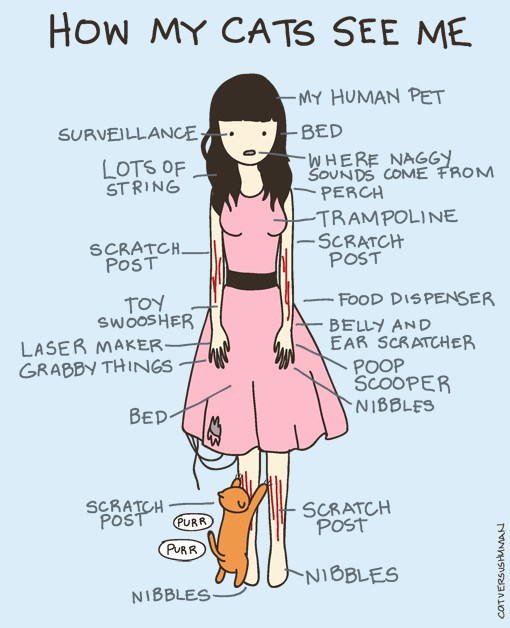 infographic drawing showing how my cat see's me