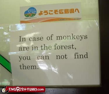 find Forest g rated monkeys signs warning - 2571981312
