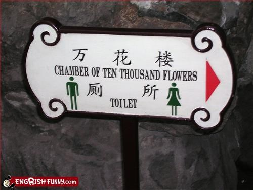 chamber,flowers,g rated,signs,toilet