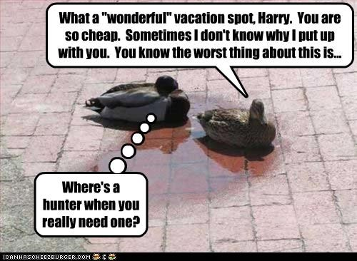 """What a """"wonderful"""" vacation spot, Harry. You are so cheap. Sometimes I don't know why I put up with you. You know the worst thing about this is... Where's a hunter when you really need one?"""