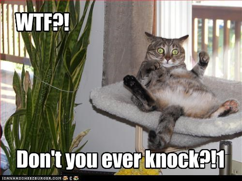 WTF?! Don't you ever knock?!1 metal-maiden
