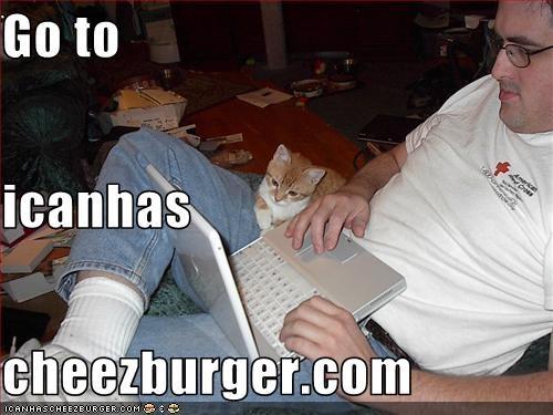 Cheezburger Image 2582805504