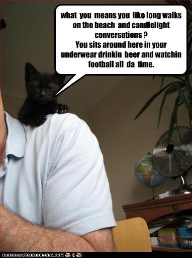dating helping kitten lies online - 2586952704