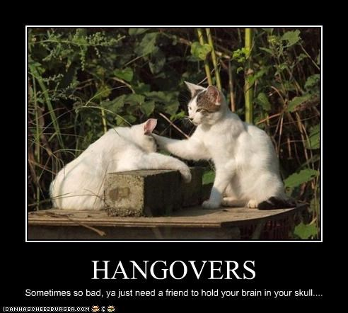 alcohol do not want friend hangover helping - 2588471296